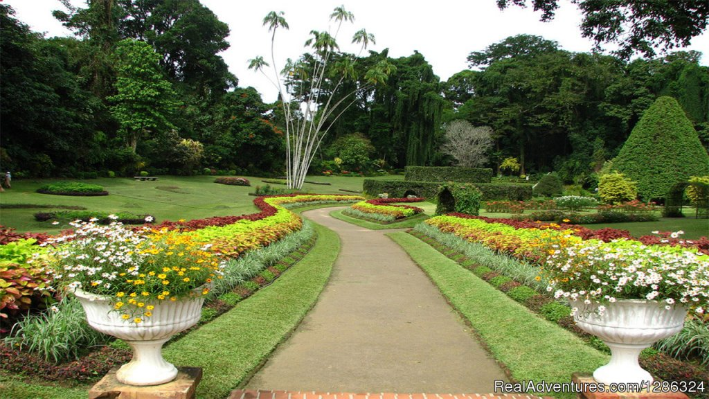 Royal Botanical Garden Peradeniya