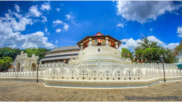 Kandy Day Tours