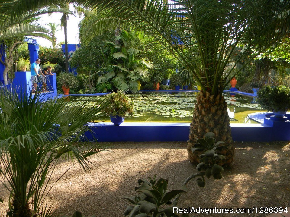 Majorelle gardens, Marrakech with local guide | Image #11/26 | Camel Tours Morocco