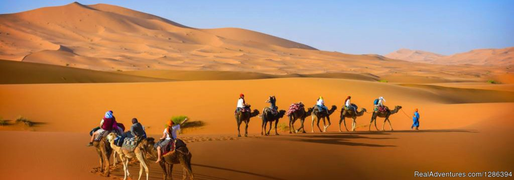 Ddesert Tours from Marrakech to Merzouga | Image #13/26 | Camel Tours Morocco
