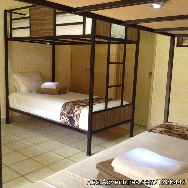 Male Dorm At Hostel Hostalife - Hostel Hostalife