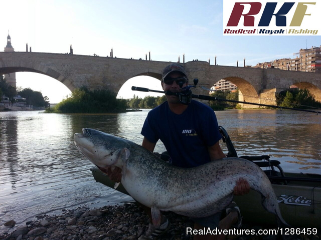 fishing guides Ebro river Spain