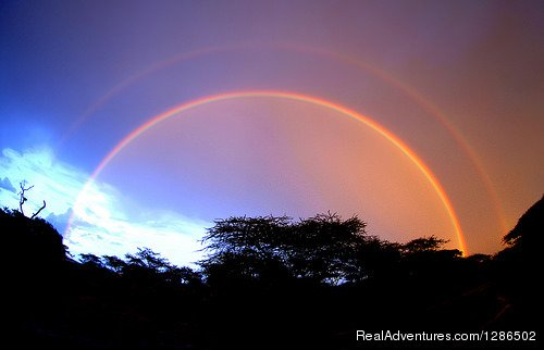 Rainbow, Serengeti National park | Image #16/20 | Pure Wildness Tanzania