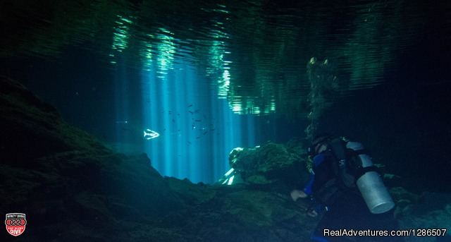 Infinity2Diving: Exciting Scuba Diving Trips in MX