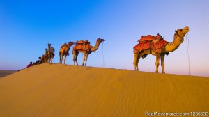 Tours around Morocco Marakech, Morocco Sight-Seeing Tours
