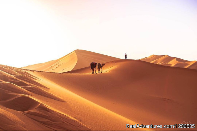 Desertbrise Travel Zagora, Morocco Sight-Seeing Tours