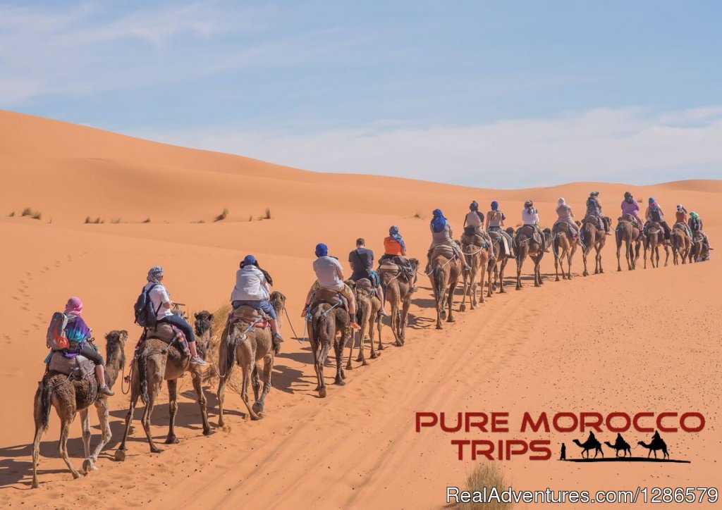 Merzouga Camel Trekking | Image #2/3 | 3 Days From Fes To Marrakech