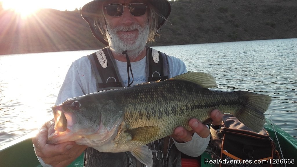 We are based in the small town of Mertola by the Guadiana river. We offer guided fishing trips for Largemouth Bass  and fly fishing for Shad when season. Also offering longer trips for Comizo Barbel.