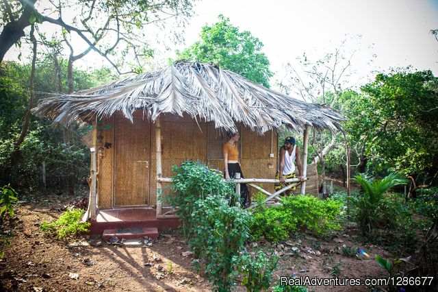 Eco hut with attached bathroom