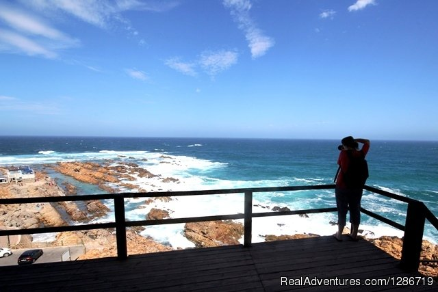 South Cape Expeditions - Mossel Bay Point | Image #2/2 | Private Garden Route Tour