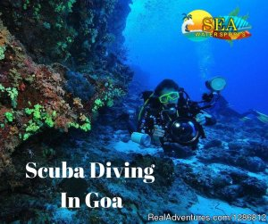 Scuba Diving in Goa Goa, India Scuba & Snorkeling