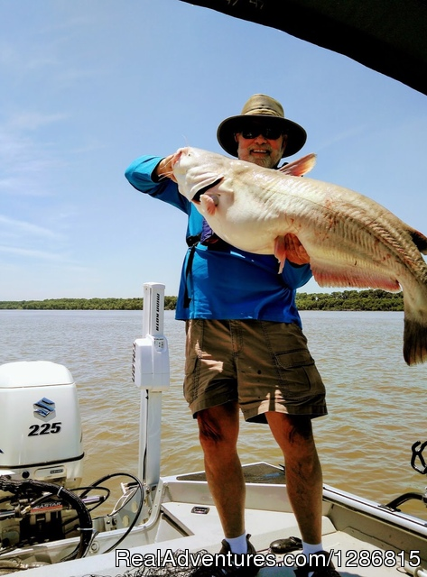 - Fish Memphis for Trophy Catfish