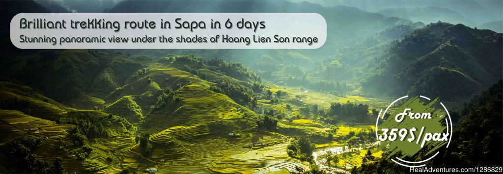 A complete trekking adventure takes you to the best and longest trek trails to remote villages. This Sapa trek includes hiking up and down hill terrain following the routes twisting around Hoang Lien Son mountain range. Keep your feet through dense w