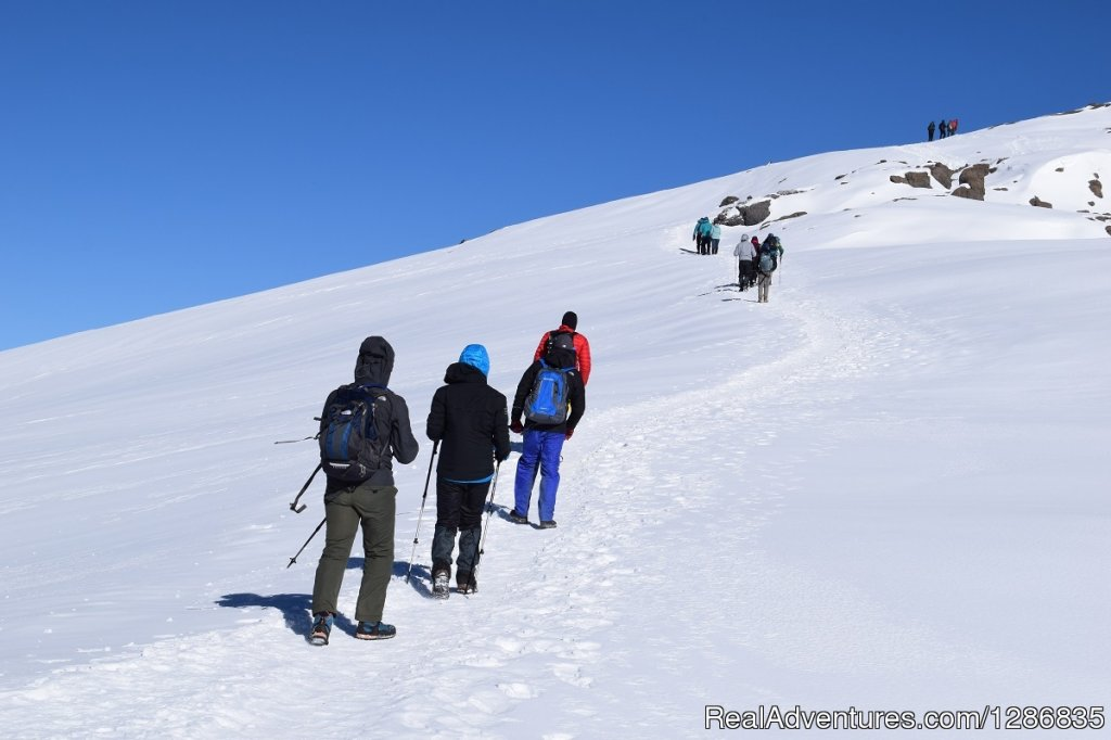 7 Days Kilimanjaro Trek -Lemosho Route