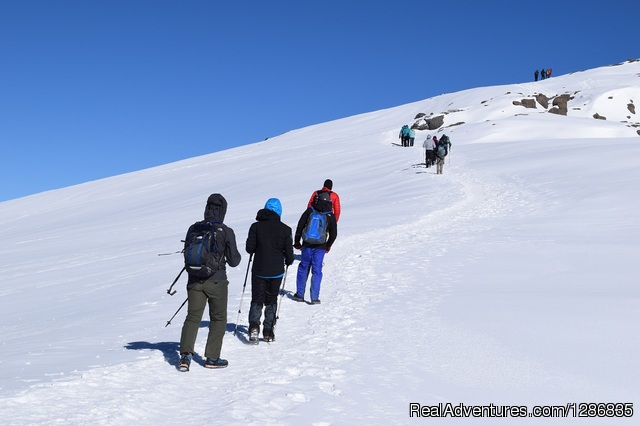 Majestic Kilimanjaro Climb The lifetime adventure