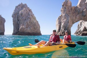 High Tide Los Cabos , the best ecotours Eco Tours Baja California, Mexico