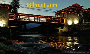 Explore Bhutan with KNG Bhutan tours and travels Bhutan, Bhutan Sight-Seeing Tours
