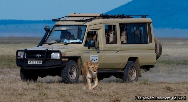 Private Family Safari