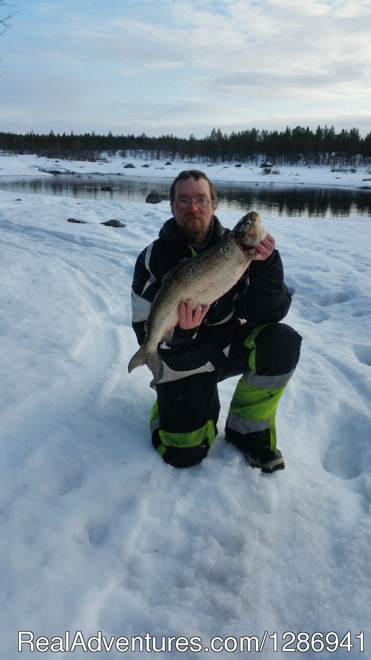 White fish is hard to catch, but delicious when smoked. | Image #7/9 | Best Fishing In Lapland