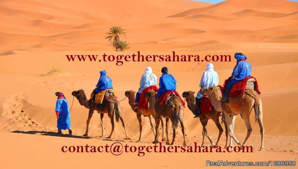 Together Sahara transport agency specializing in Morocco. Departure from Fes and Marrakech. 