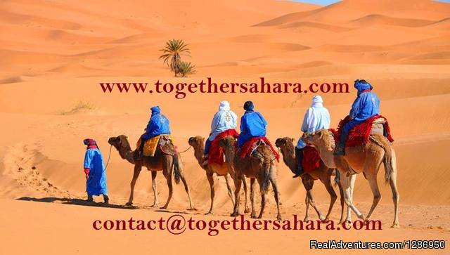 Together Sahara