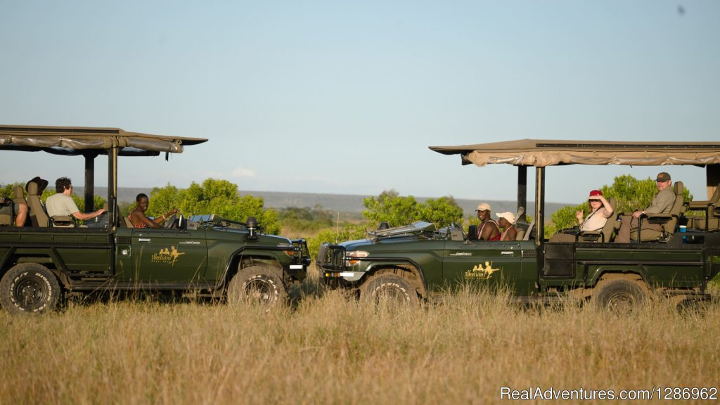 Image #7/9 | Wildlife Tours in Africa