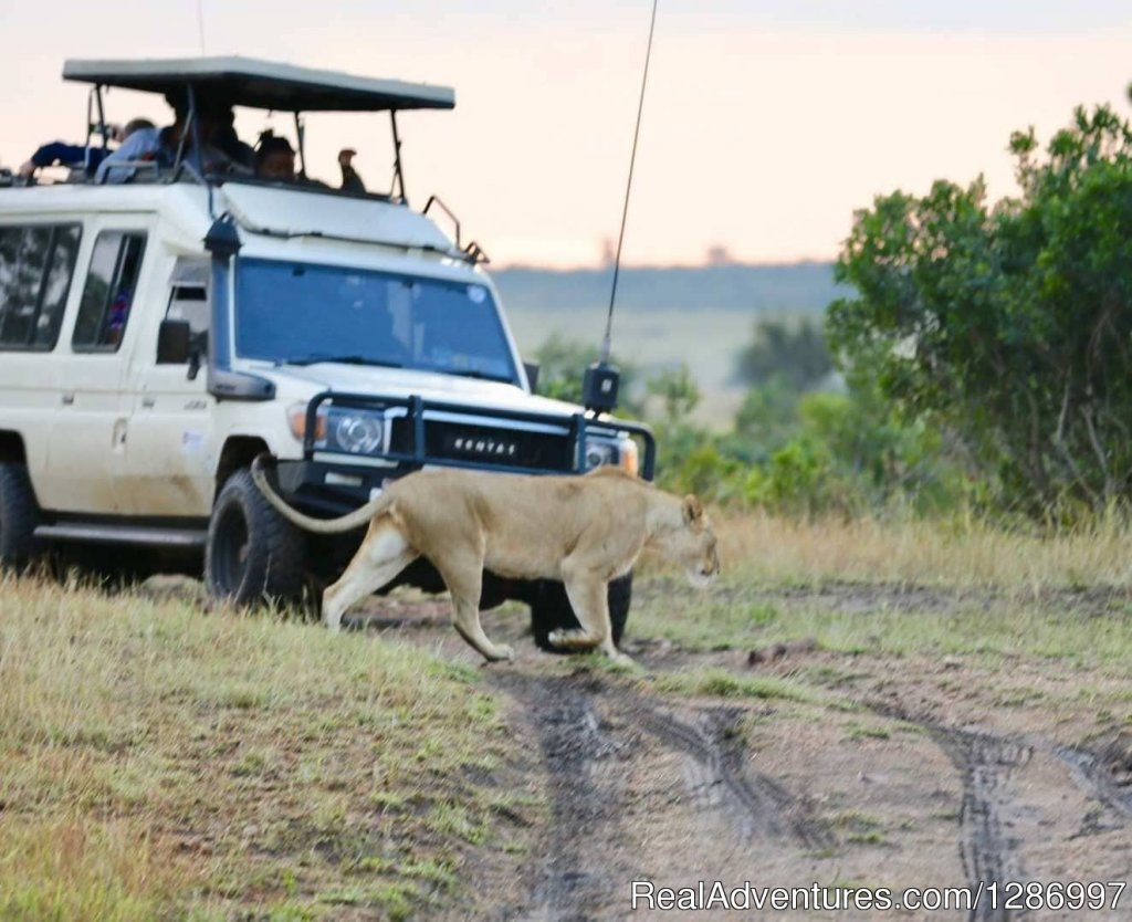 Image #6/8 | Plan Your Next African Expedition