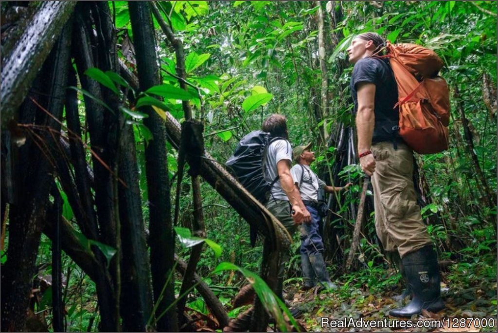 Exploring Darien | Image #7/11 | Darien Gap Jungle Expedition - Panama