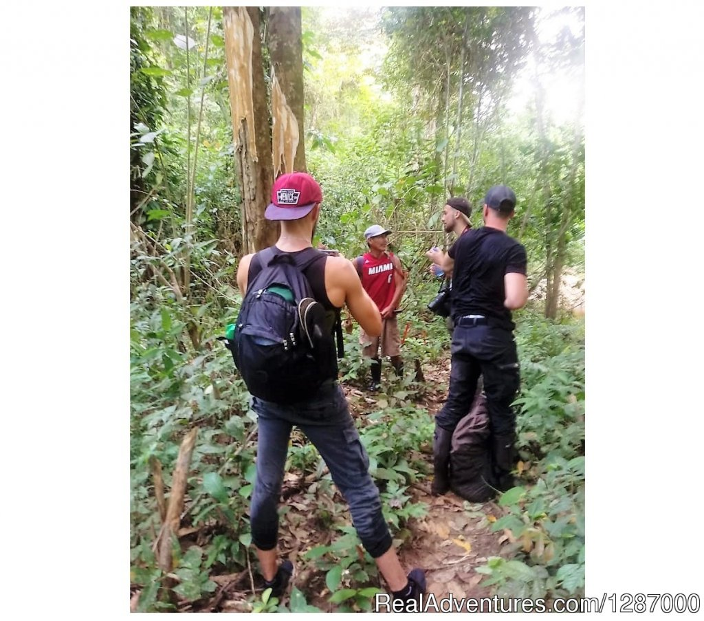 Treking and Hiking in Darien Gap | Image #11/11 | Darien Gap Jungle Expedition - Panama