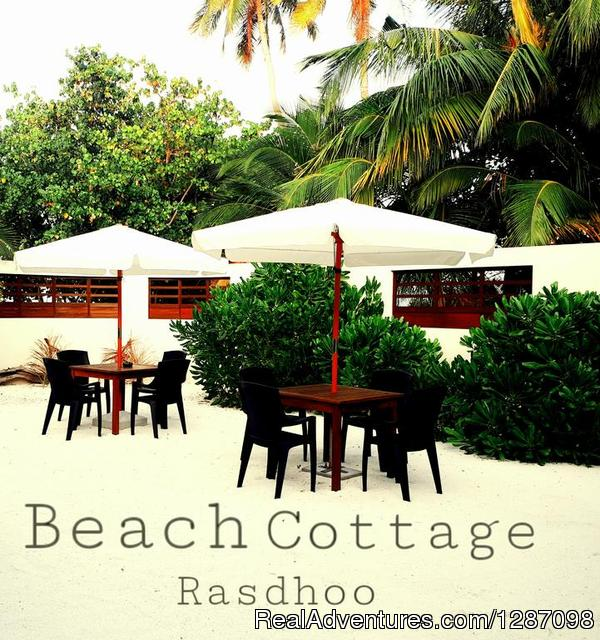 Beach Cottage Rasdhoo Maldives Guesthouse