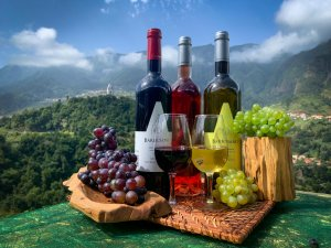 Skywalk & Professional Wine Experience. Eco Tours Madeira Island, Portugal