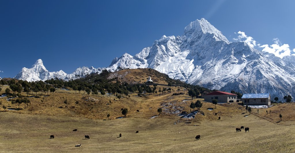 View From Syangboche